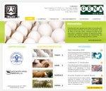 Página Web Gena